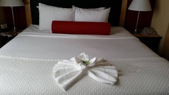 Cambria Hotel & Suites Miami Airport - Blue Lagoon: maid service was excellent