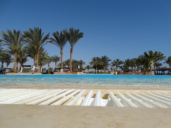 Piscine picture of jaz solaya marsa alam tripadvisor for Piscine brighton