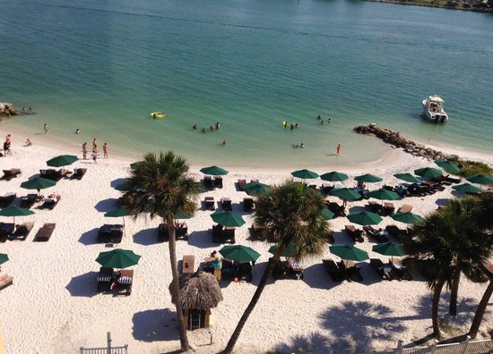 Clearwater Beach Florida Wyndham Garden