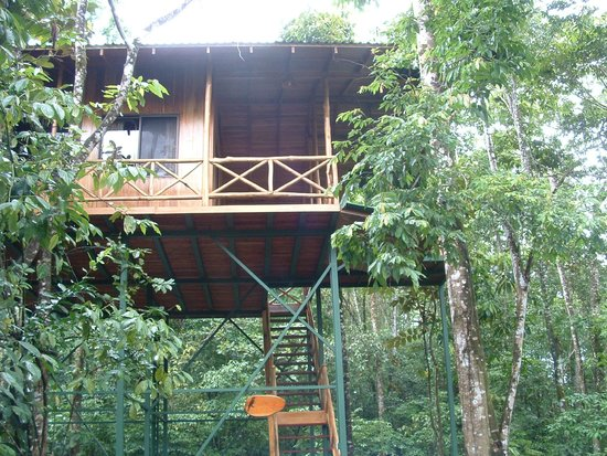 Waterfall at tree houses hotel picture of tree houses for Tree house for sale costa rica