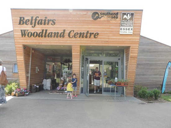Image result for Belfairs woodland centre