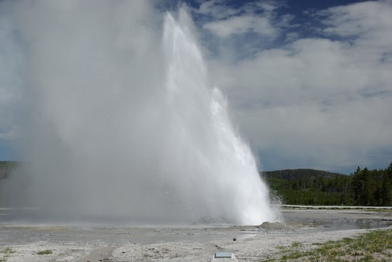 Grand Loop Road: Some of the coolest geysers are ones other than Old Faithful...