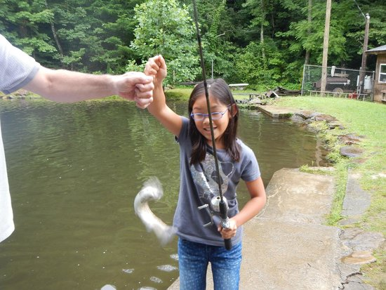 Almond, NC: Caught another one!
