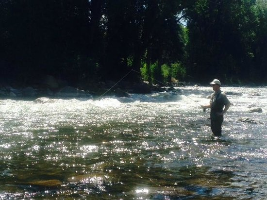 Picture of gore creek fly fishing vail for Fly fishing vail colorado