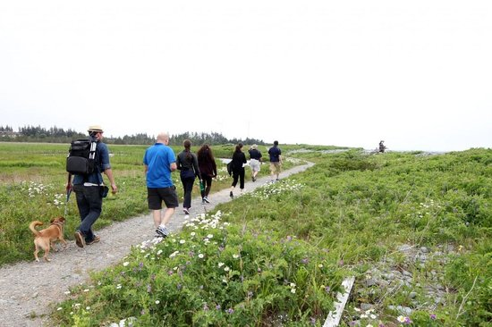 Church Point, Canada: Le Petit Bois trails behind the centre. Guided walks available ($)