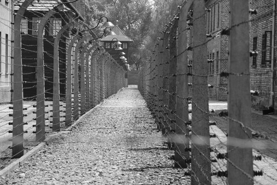 Very Wet Day  Picture Of Escape 2 Poland  Private Tours Auschwitz Krakow