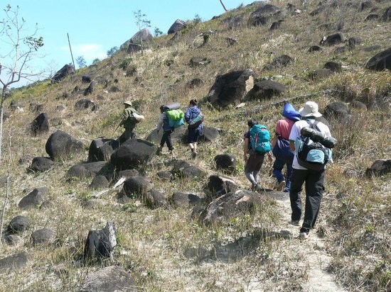 VJT Adventures - Private Day Tours