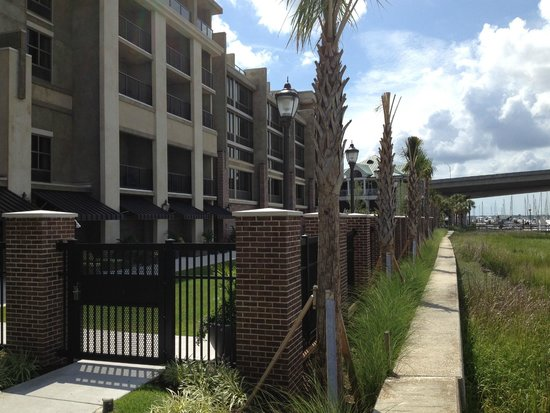 Hilton Garden Inn Charleston Waterfront/Downtown: The back of the hotel and pool area.