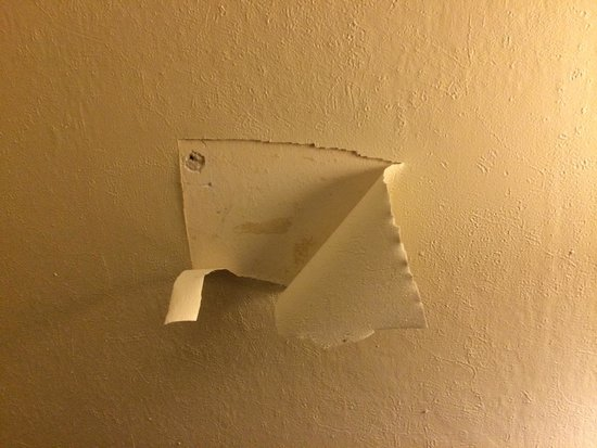 Romulus, MI: Walpaper in room..  Is that a bullet hole?