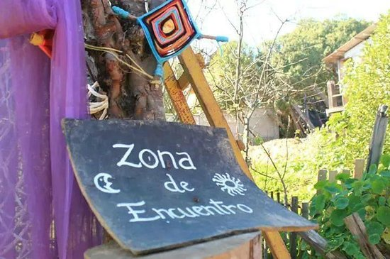 Hostal La Conexion del Poeta Eco, Art & therapy