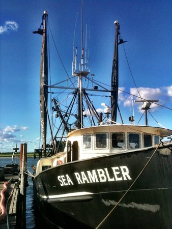 Steamer picture of point lookout clam bar point for Point lookout fishing report