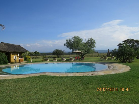 Swimming Pool Picture Of Flamingo Hill Tented Camp Lake Nakuru National Park Tripadvisor