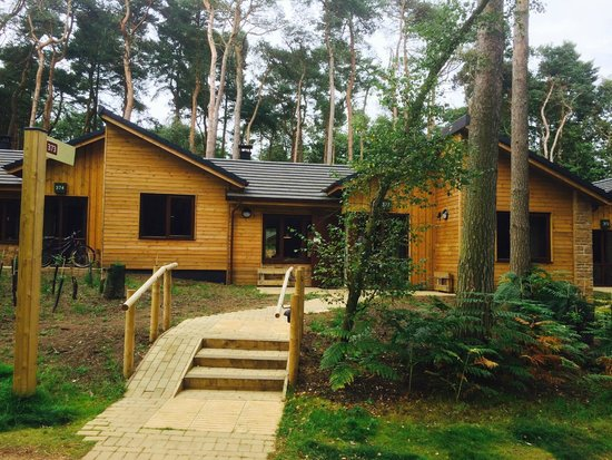 Forest Lodge Bed And Breakfast