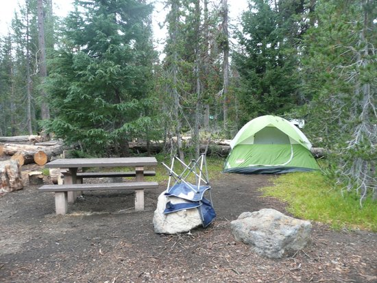 Tent Area Picnic Table Picture Of Mazama Village Motor