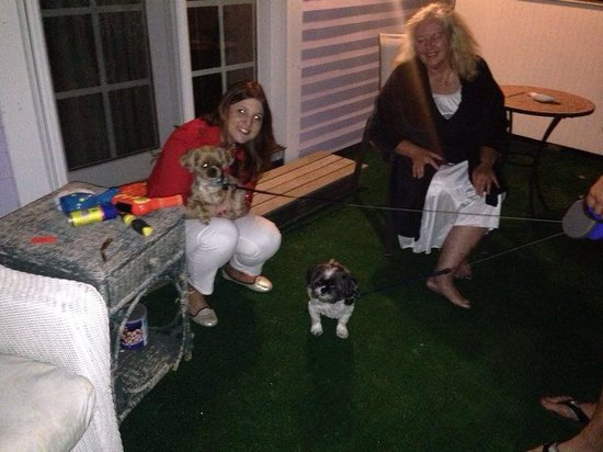 The Conch Inn: Sitting at the terrace with Jeanne and two dogs of other guests