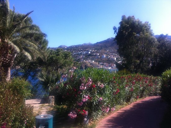 Photo of Eternal Oasis Bungalow Suites Agia Pelagia