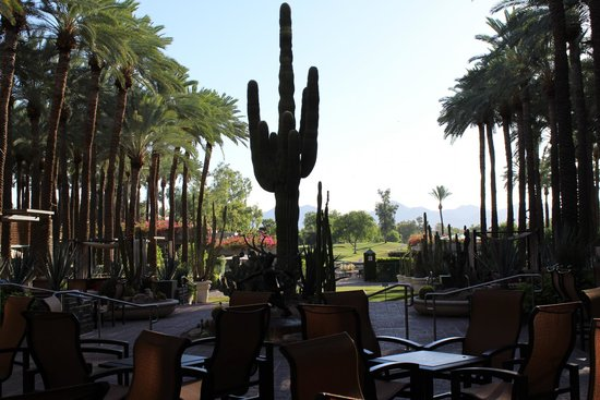 Hyatt Regency Scottsdale Resort and Spa at Gainey Ranch: view from the lobby in the morning
