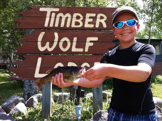 Ely, Μινεσότα: Timber Wolf Lodge- Nice Catch!