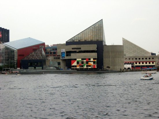 Aquarium Picture Of Inner Harbor Baltimore Tripadvisor