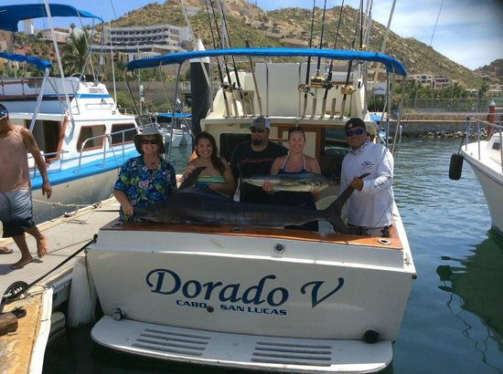 Dorado v 28 39 fishing boat picture of cabo fishing for Cabo san lucas fishing charters