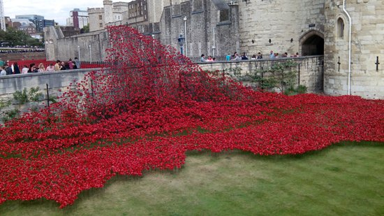 Tower of London Poppies Aerial Images Tower of London Poppy's