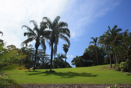Paradise Palms: Rolling Hills and views