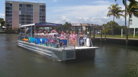 Estero Bay Express Dolphin & Sunset Boat Tours