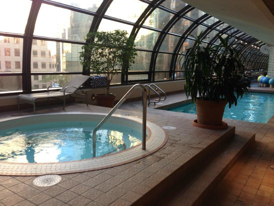 Metropolitan Hotel Vancouver: Indoor whirlpool, pool, some of fitness center. A seagull came to check out the pool!