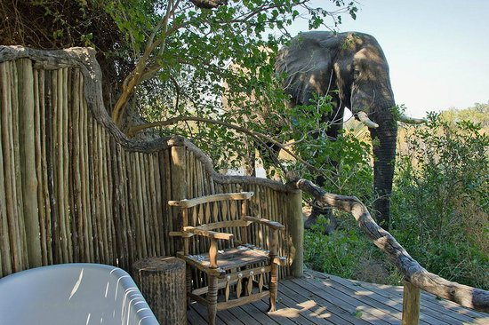 Wilderness Safaris Little Vumbura Camp