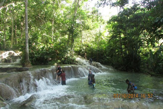 Dunn's River Falls and Park: Cool and refreshing on a hot Jamaica day....