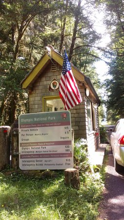 Entrance to olympic national park hoh forest picture of for Cabin rentals olympic national forest