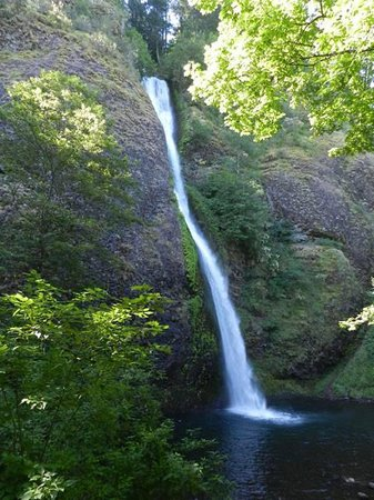 BEST WESTERN PLUS Columbia River Inn: Horsetail Falls, just a few minutes away. Right at the road. No hike needed.