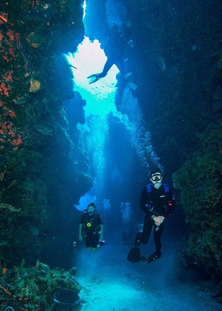 Cozumel Santa Rosa Wall Picture Of Deep Life Diving