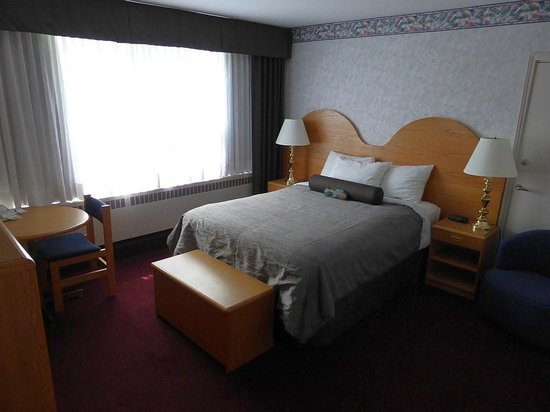 Bow View Lodge: standard queen room with river view