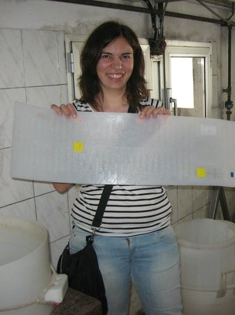 Discover with Laura - Food Tours in Parma