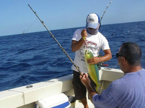 Susan 39 S Mutton Snapper Picture Of Cancun Fishing Tours