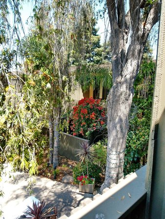View From The Room Picture Of Dinah 39 S Garden Hotel Palo Alto Tripadvisor