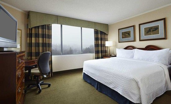 Photo of Embassy Suites Hotel Baltimore BWI - Washington Intl. Airport Linthicum