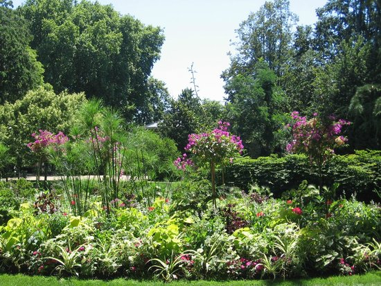 jardin botanique picture of jardin botanique de tours tours tripadvisor. Black Bedroom Furniture Sets. Home Design Ideas