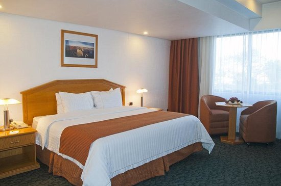 Holiday Inn Plaza Dali Mexico City: Single Bed Guest Room