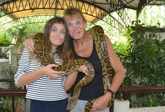Albino python and the newly weds! - Picture of Snake Farm (Queen Saovabha Mem...