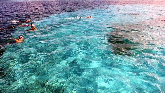 Tabyana Beach Picture Of Belize Cruise Excursions Tours Belize City Tripadvisor