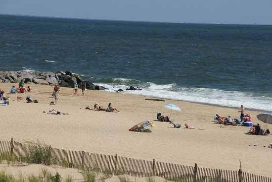 Herring Point Beach Picture Of Cape Henlopen State Park