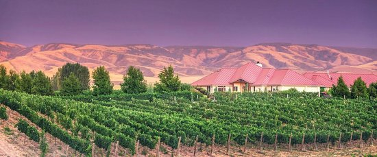 Photo of Girasol Vineyard & Inn Walla Walla
