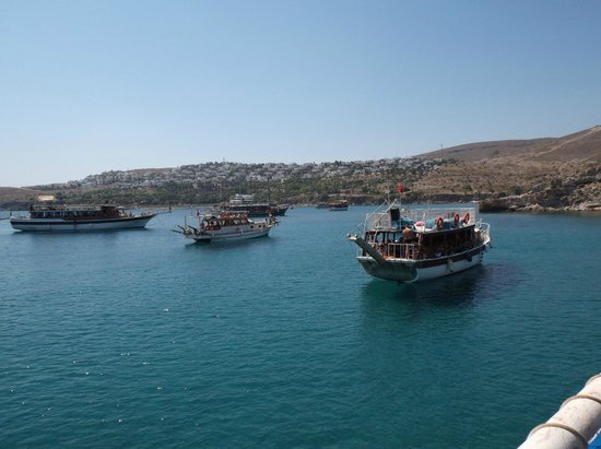 nice views - Picture of Ozzlife Boat - Daily Boat Trips ...