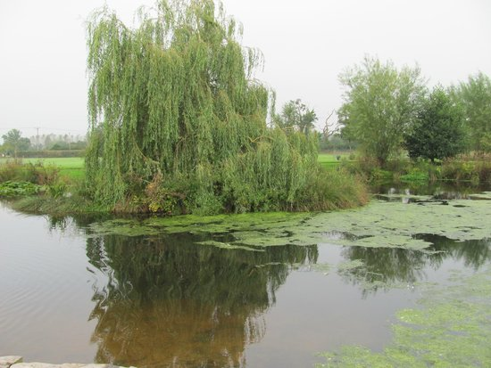 The canal walk picture of willand cullompton tripadvisor for Boutique hotel xym pyeongtaek