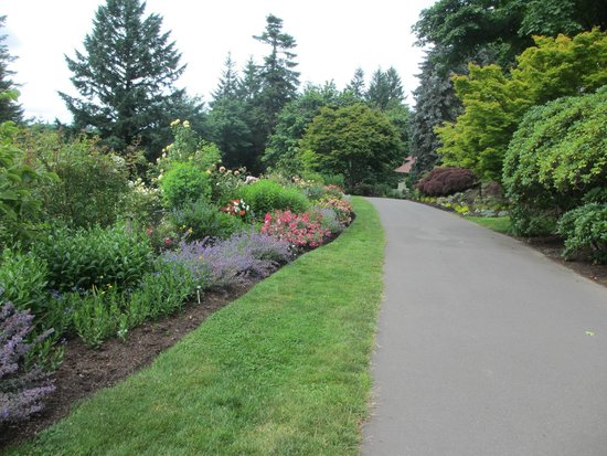 Portland and mt rainier from the front lawn picture of for Indoor gardening rainier oregon
