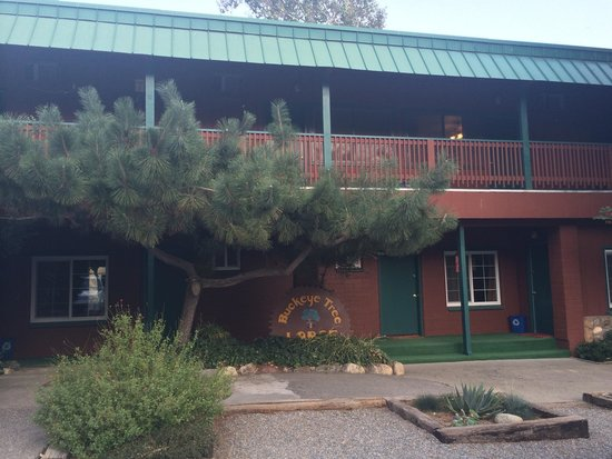 Buckeye Tree Lodge: The rooms from outside