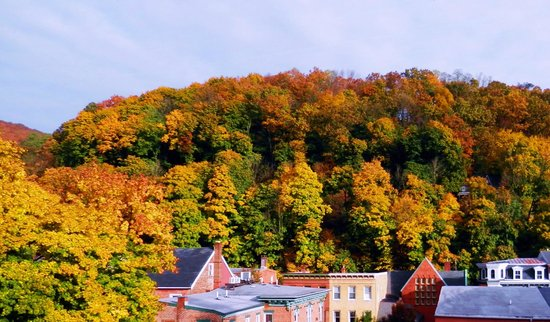 The Times House: Peak Fall foliage view from our Overlook Room