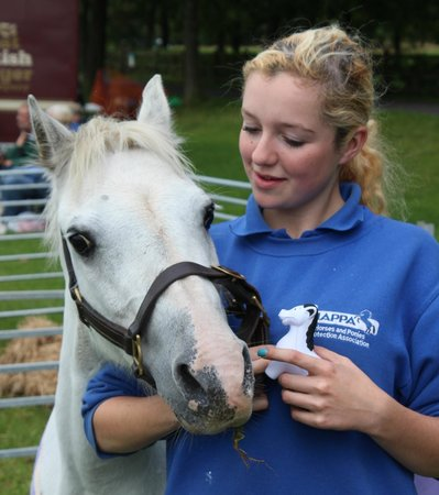 HAPPA Horses and Ponies Protection Association